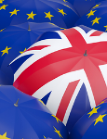 EU-UK Trade and Cooperation Agreement